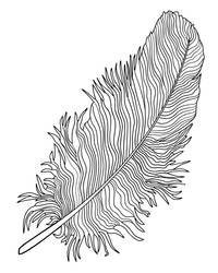 Feather Design3 by riverfox1