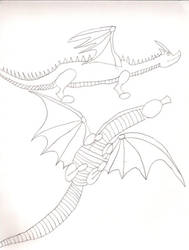 Dragon Sketches by cougartiger