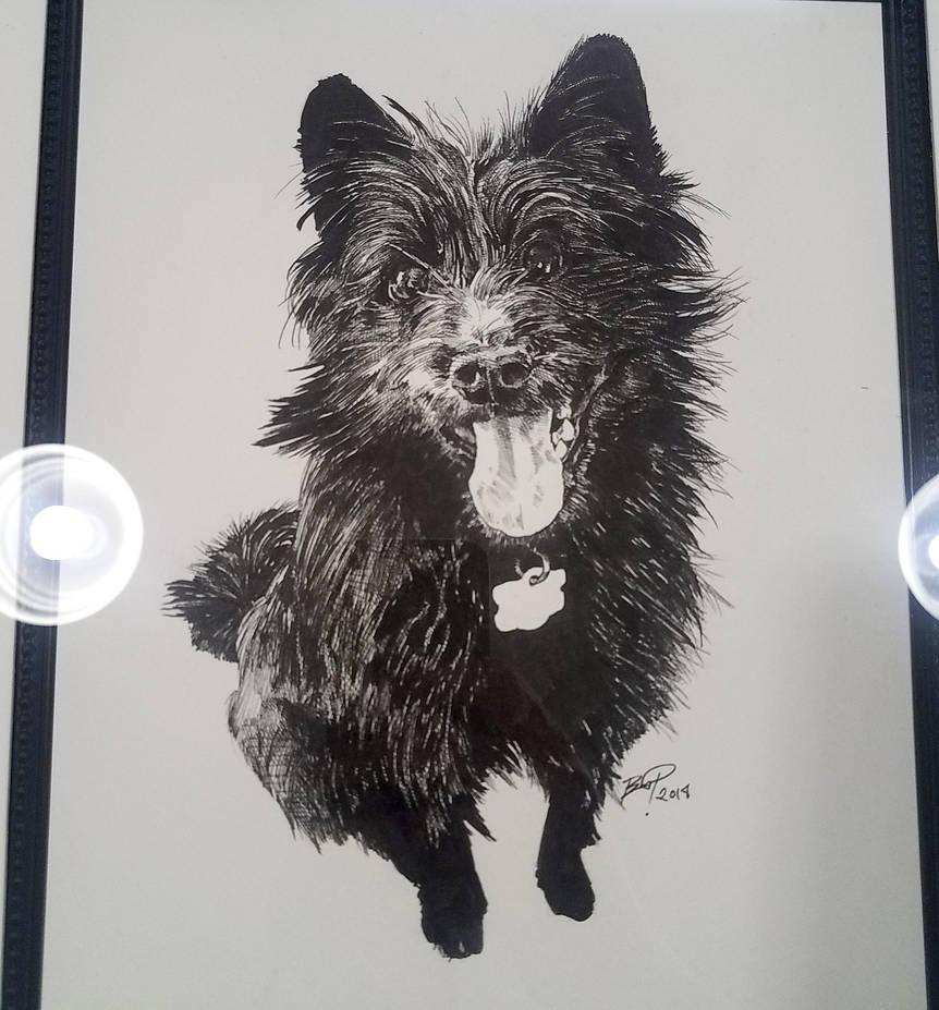 Pet Illustration by Essig-Peppard