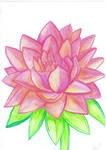 Lotus by getupp