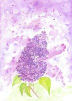 Lilac by getupp