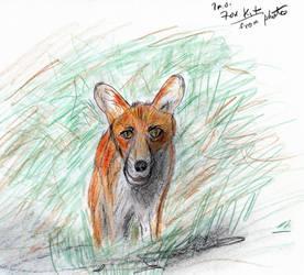Fox Kit by Ffex