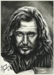 Sirius Black by thewholehorizon