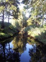 Water scene by MisterMonkey95