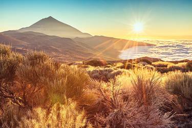 Teide by Sigurd-Quast