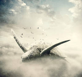 Dreams by Ponti55
