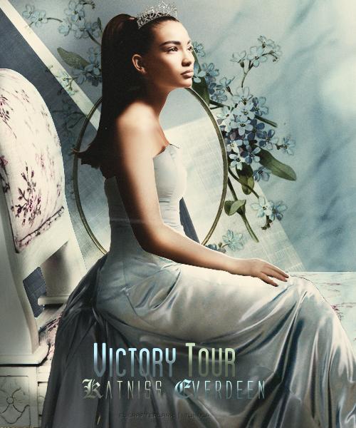 Victory Tour Manip by everafterlark
