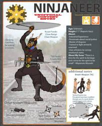 UNNOFFICIAL ENTRY: The Ninjaneer by Draconis-de-Christus