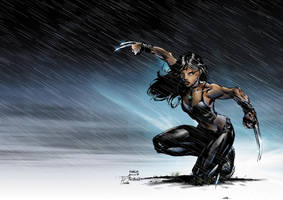 X-23 Coloured 2 by NineteenPSG