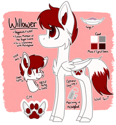 Willower Ref by Stubborn-Dreamer