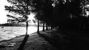 Haces de luz. by FlowerPower17