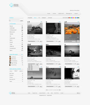 WS Web Interface by Positivist