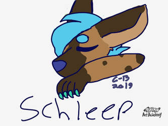 Schleep by Crispy-Biscuit