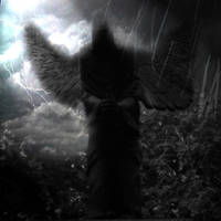 Angel... by amrothmelaswul