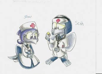 Ninja Crow Doctor and his wife by StarScout-lost