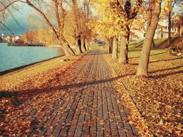 orange autumn by AnnMe