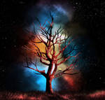 The Tree Of Second Chances by Ted-Drakness