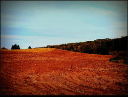 Fall Ploughing by surrealistic-gloom