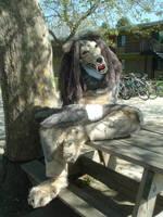 Vicious Fursuit Posing by squeakychewtoy