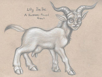 Lilly Belle Charcoal drawing by squeakychewtoy