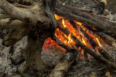 Fire camp by Ninie