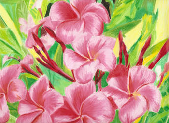 Flowers by slevin7kelevra