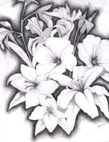 flowers by ibrokemyumbrella