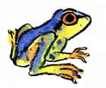 my last nameless frog lol! by Naoru