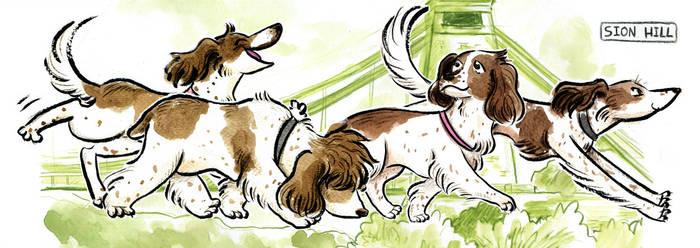 Spaniels at Clifton by Naoru