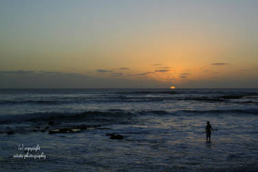 Hawaii 21 by ThruEmilysEyesPhotos