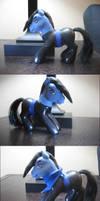 Finished Tadashi Pony by modesty