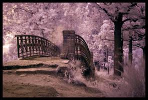 The Bridge Detail by SilverJ