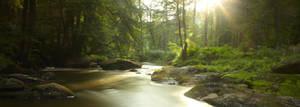 little creek II by indojo
