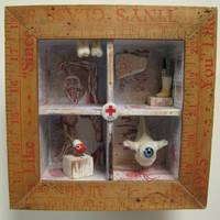Medical Oddity Assemblage by bugatha1