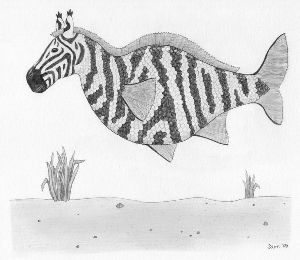 Zebra Fish Finished by samrhodes