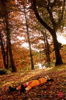 The autumn sun by oOoNaruto-chanoOo