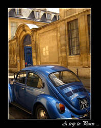 A Beatle in Paris by Anonymous-Caribou