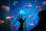 Fish Eyes by Amanda-Kulp
