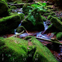 In The Flow by Linkineos