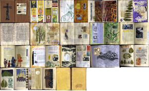 CBC Altered Book by Lauraphay
