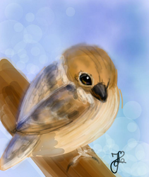 Sparrow (Day 176) by Hedwigs-art
