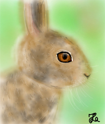 Rabbit (Day 178) by Hedwigs-art