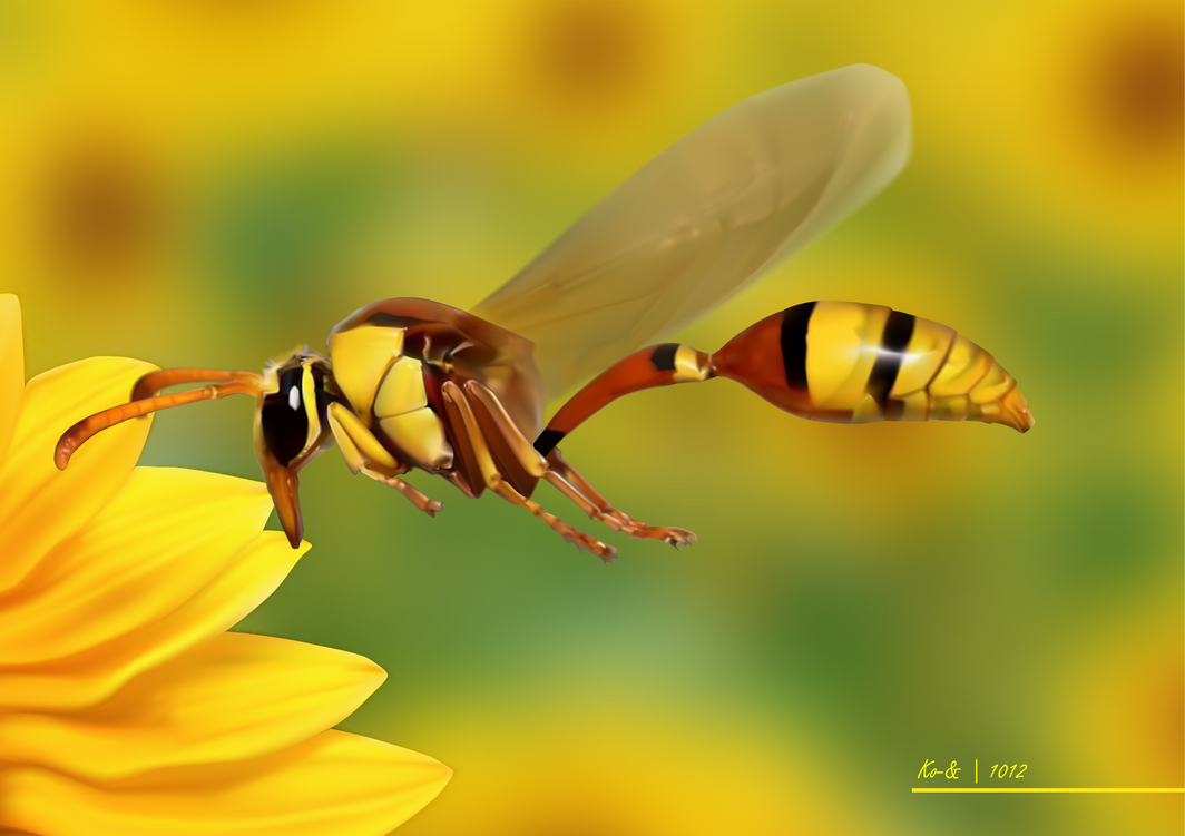 The Real Bumble-bee by Koen-Edward
