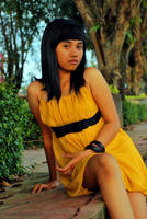 In an evening.... 4 by banditkecil
