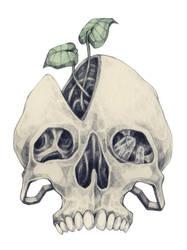 skull by rhuu