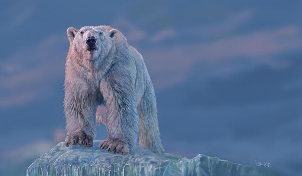 Pink Polar Bear by Hagge
