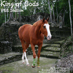 King of the Gods (PEE Stallion) by Carillie