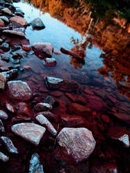 Autumn River. by aLLySaN