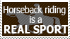 Request: Horseback riding is a real sport. by World-Hero21