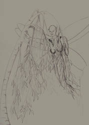 Willow Fairy 1 by dontkickmycane